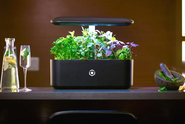 nasa-inspired-led-lighting-for-3d-plant
